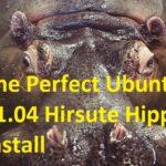 The Perfect Ubuntu 21.04 Hirsute Hippo Install
