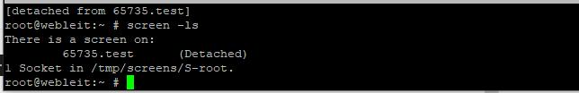 screen command list processes