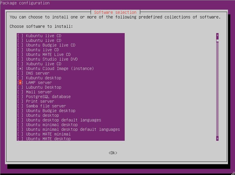 LAMP server, install and run tasksel in ubuntu